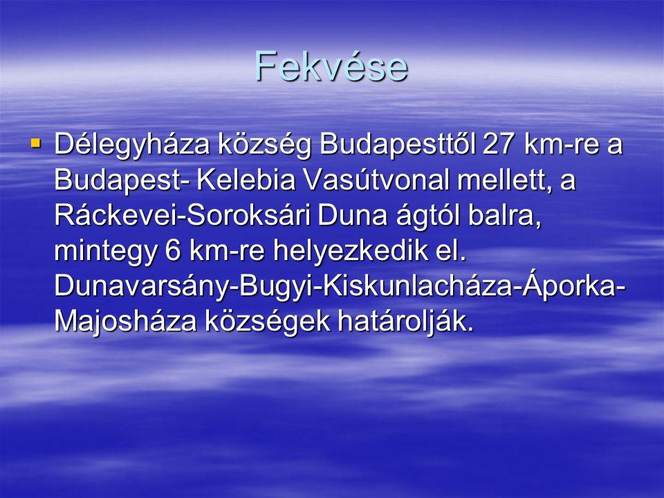 Fekvése  Délegyháza község Budapesttől 27 km-re a Budapest- Kelebia Vasútvonal mellett, a Ráckevei-Soroksári Duna ágtól balra, mintegy 6 km-re helyezkedik el.