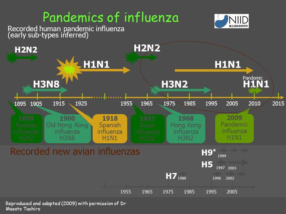 Szezonális és 2009 H1N1 influenza térkép