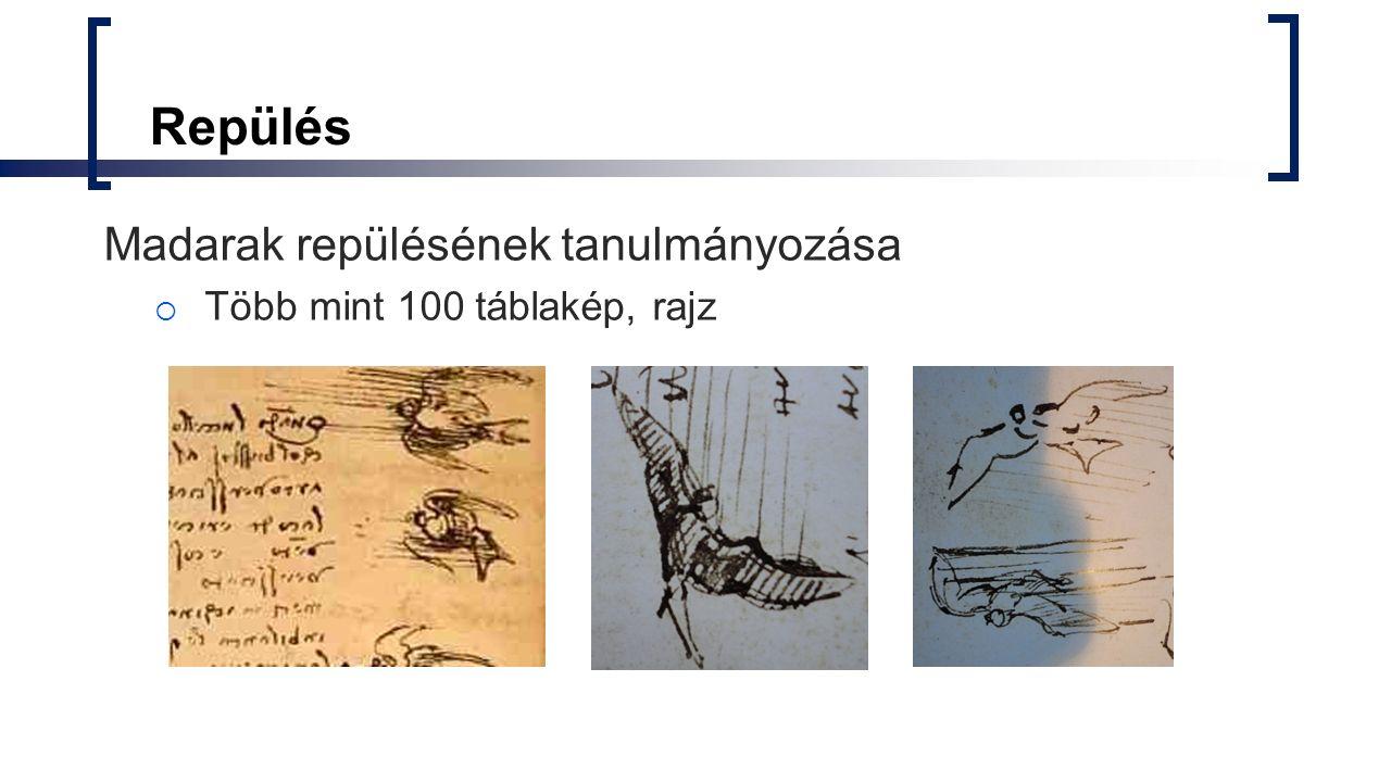 Repülés Madarak repülésének tanulmányozása  Több mint 100 táblakép, rajz