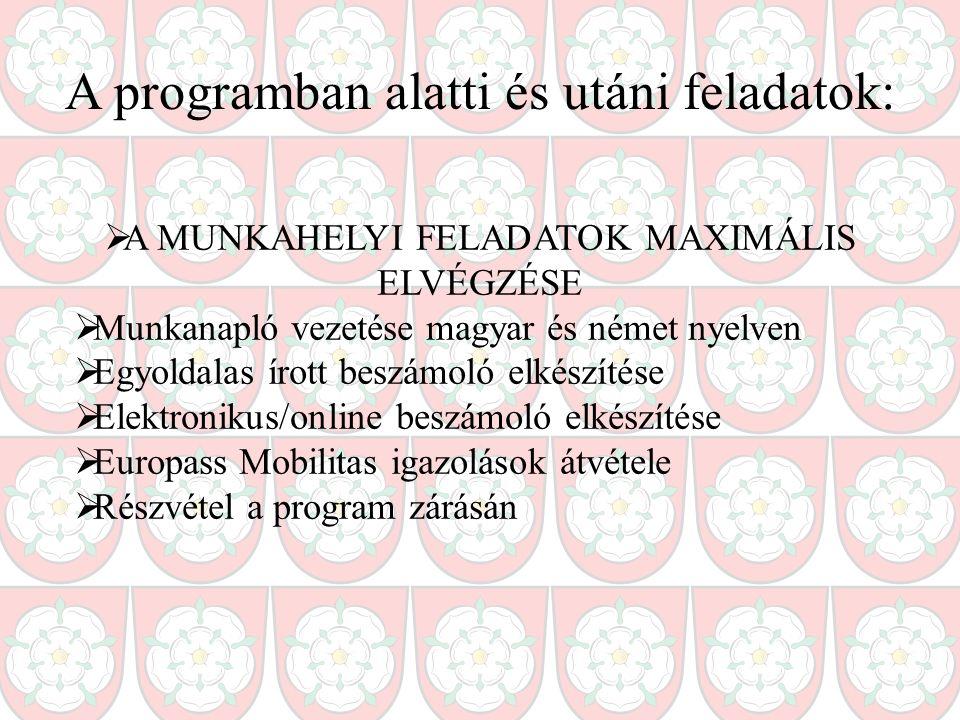 A programban alatti és utáni feladatok:  A MUNKAHELYI FELADATOK MAXIMÁLIS ELVÉGZÉSE  Munkanapló vezetése magyar és német nyelven  Egyoldalas írott