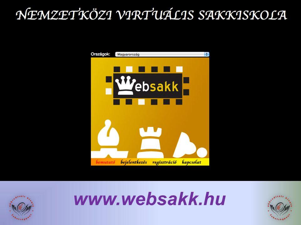 www.websakk.hu