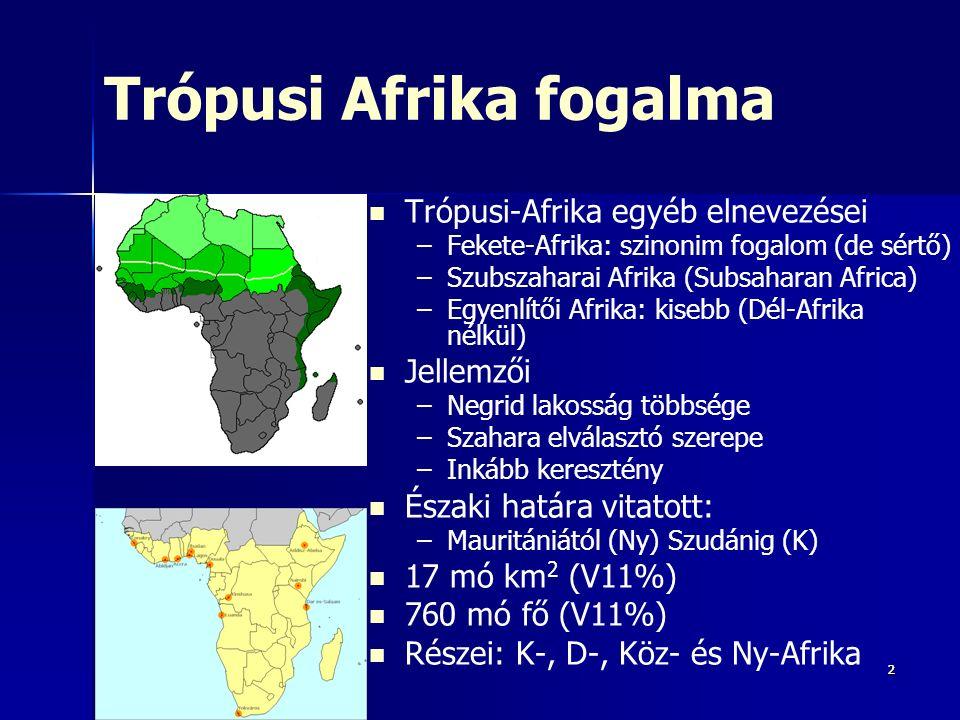 333 Trópusi Afrika: ma is a legnagyobb fokú elmaradottság Legalacsonyabb GDP/fő: Trópusi-Afr és D-Ázsia – –De: D-Ázs: komoly fejlődés – –Trópusi-Afr: változatlan árakon csökkenő GDP (nem tart lépést term szaporodással)  egyre hátrányosabb világgazd-i periférián belül XX.