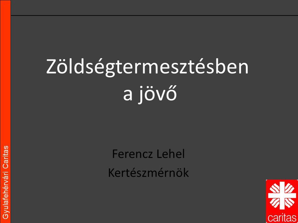 Gyulafehérvári Caritas Ferencz Lehel Kertészmérnök Zöldségtermesztésben a jövő