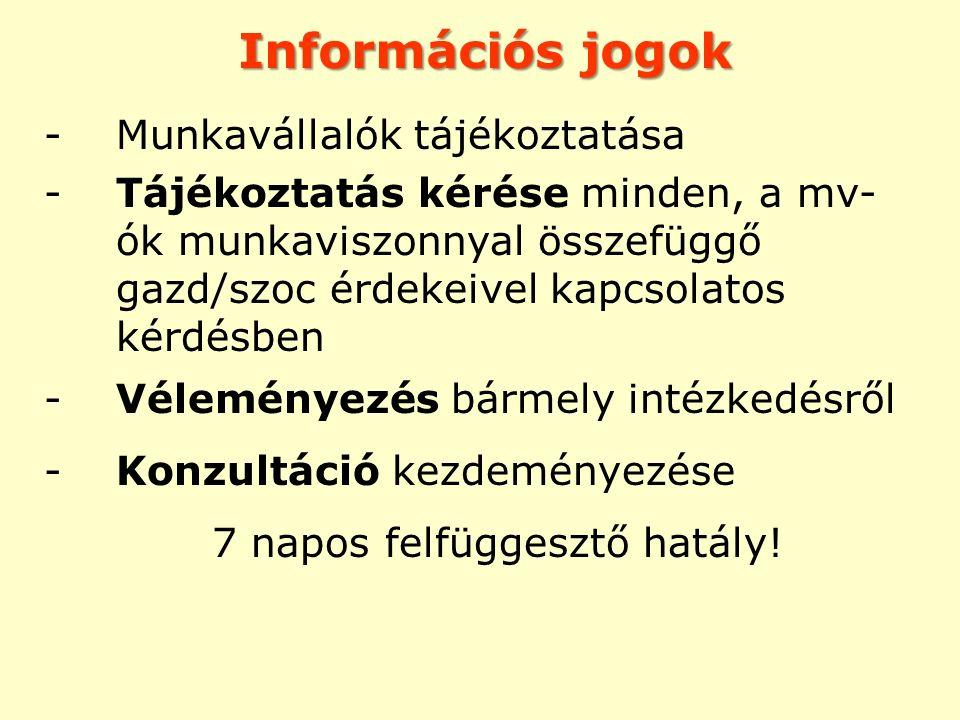 Információs jogok -Munkavállalók tájékoztatása -Tájékoztatás kérése minden, a mv- ók munkaviszonnyal összefüggő gazd/szoc érdekeivel kapcsolatos kérdé