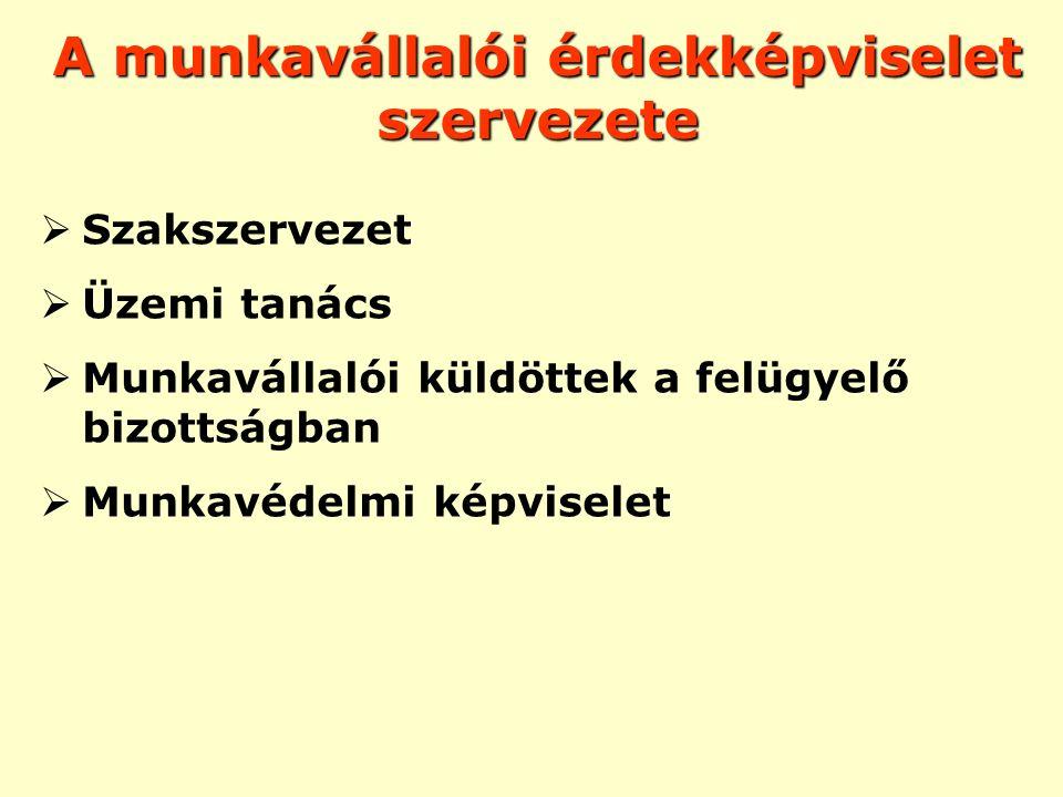 SZAKSZERVEZET -Közvetett képviselet -Elkülönült szervezet (jogi személy) -Külső, szembenálló -Gazd/szoc.