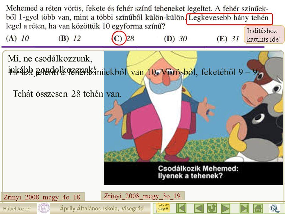 Zrínyi_2008_megy_3o_19.2.a. Mi, ne csodálkozzunk, inkább gondolkozzunk.