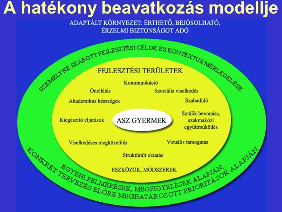 A hatékony beavatkozás modellje