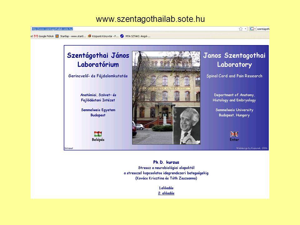 www.szentagothailab.sote.hu