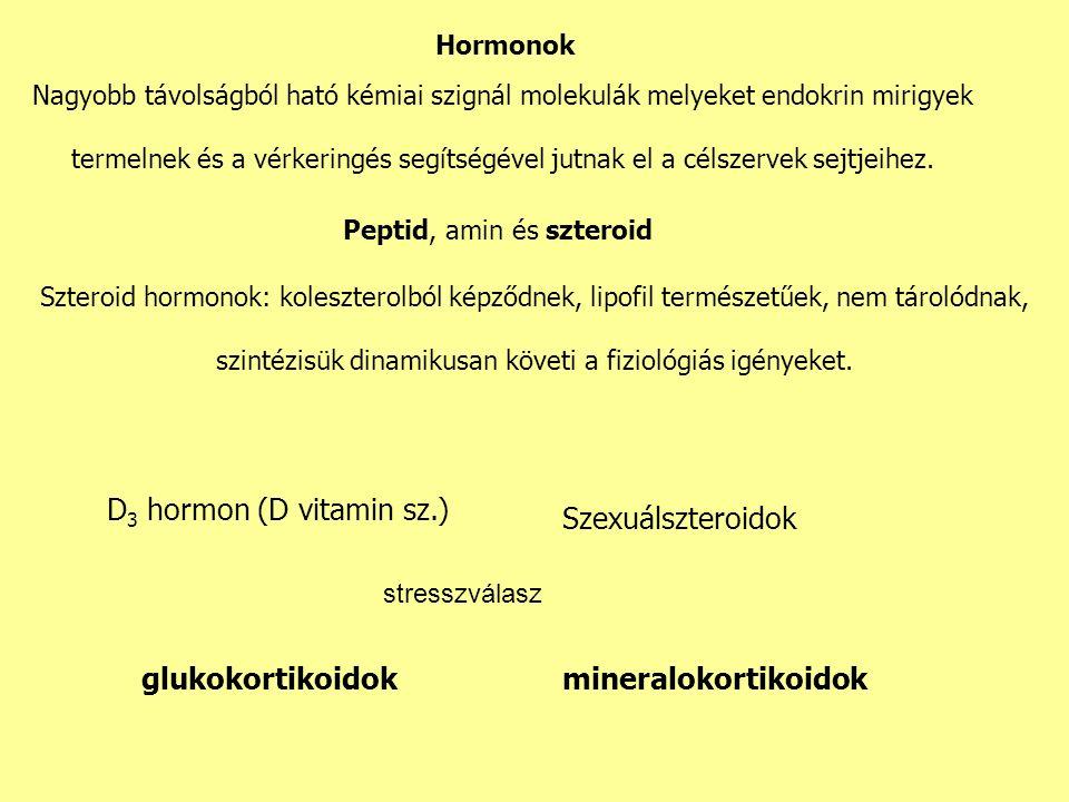Hormonok Nagyobb távolságból ható kémiai szignál molekulák melyeket endokrin mirigyek termelnek és a vérkeringés segítségével jutnak el a célszervek sejtjeihez.