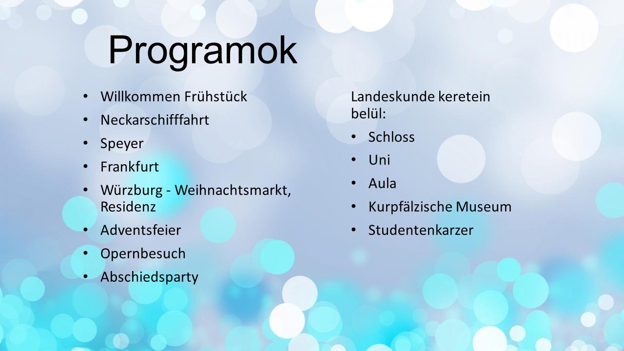 Programok Willkommen Frühstück Neckarschifffahrt Speyer Frankfurt Würzburg - Weihnachtsmarkt, Residenz Adventsfeier Opernbesuch Abschiedsparty Landesk
