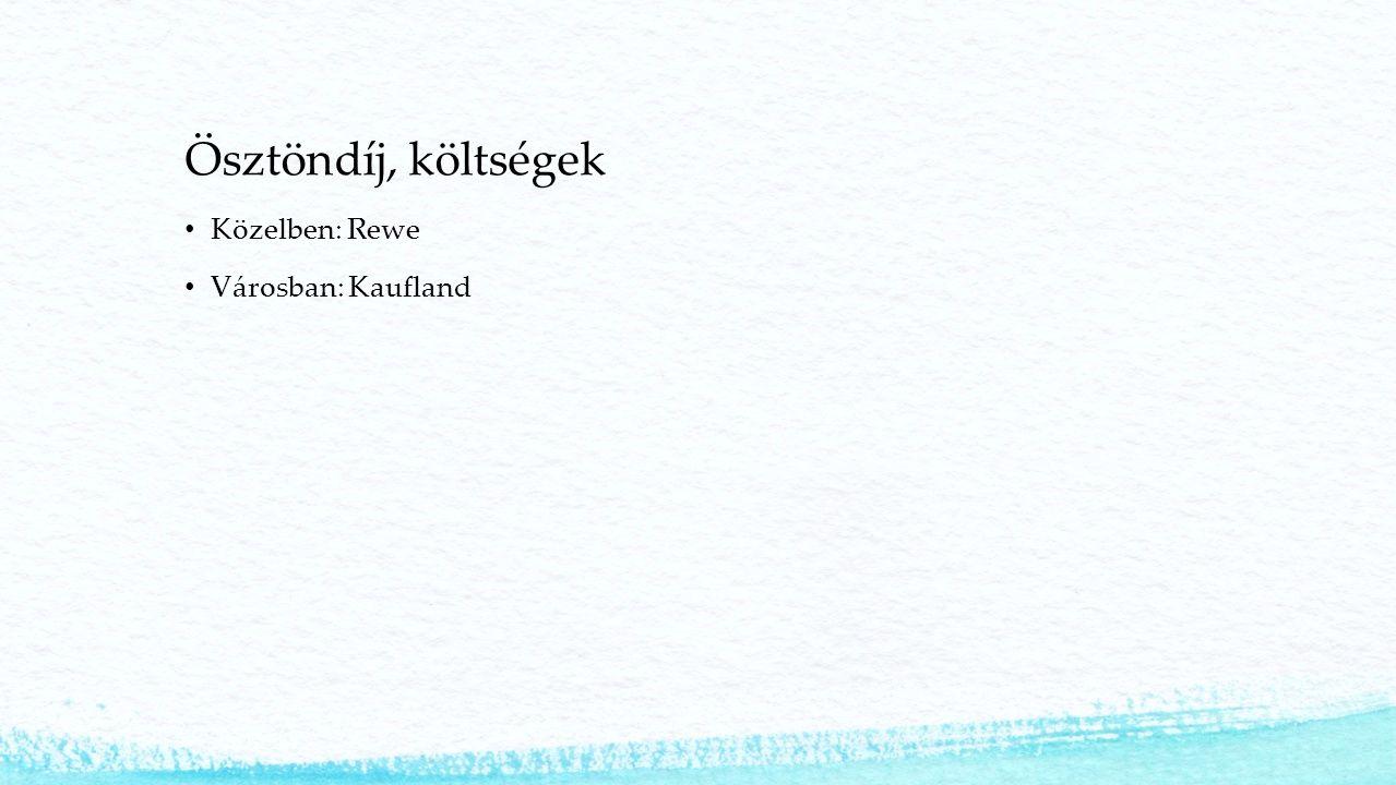 Ösztöndíj, költségek Közelben: Rewe Városban: Kaufland