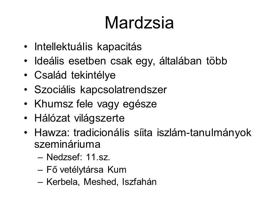 Mardzsia Intellektuális kapacitás Ideális esetben csak egy, általában több Család tekintélye Szociális kapcsolatrendszer Khumsz fele vagy egésze Hálózat világszerte Hawza: tradicionális síita iszlám-tanulmányok szemináriuma –Nedzsef: 11.sz.