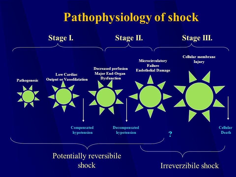 Pathogenesis Low Cardiac Output or Vasodilatation Decreased perfusion Major End-Organ Dysfunction Microcirculatory Failure Endothelial Damage Cellular