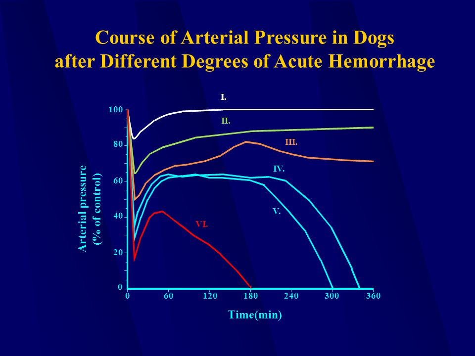 0 100 80 60 40 20 0 60120180240300360 I. II. III. IV. V. VI. Course of Arterial Pressure in Dogs after Different Degrees of Acute Hemorrhage Arterial
