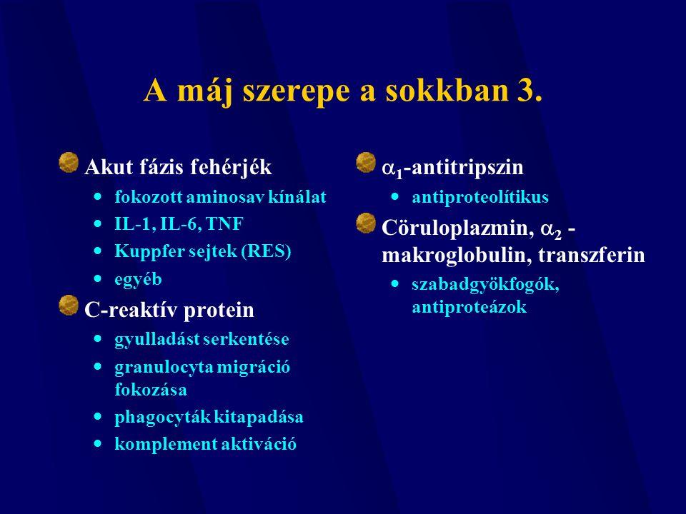 A máj szerepe a sokkban 3. Akut fázis fehérjék  fokozott aminosav kínálat  IL-1, IL-6, TNF  Kuppfer sejtek (RES)  egyéb C-reaktív protein  gyulla