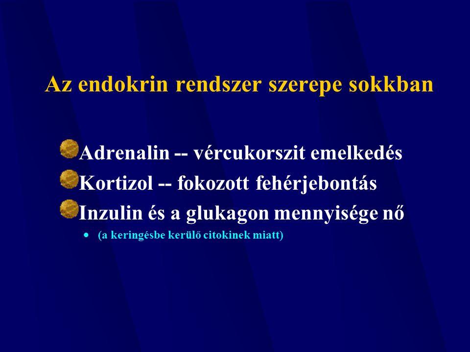 Az endokrin rendszer szerepe sokkban Adrenalin -- vércukorszit emelkedés Kortizol -- fokozott fehérjebontás Inzulin és a glukagon mennyisége nő  (a keringésbe kerülő citokinek miatt)