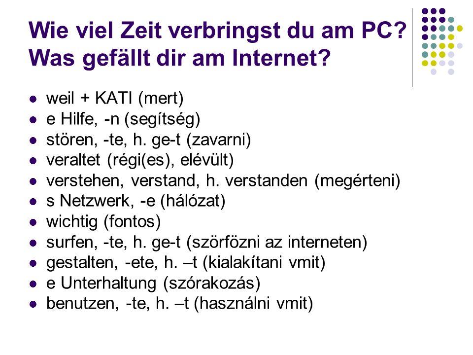 Wie viel Zeit verbringst du am PC.Was gefällt dir am Internet.