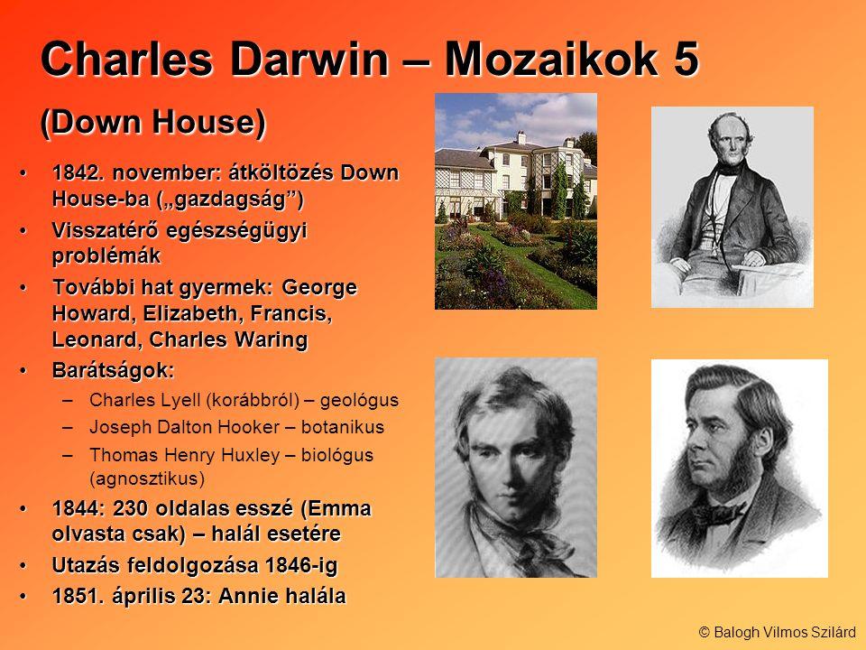 Charles Darwin – Mozaikok 5 (Down House) 1842. november: átköltözés Down House-ba (gazdagság)1842. november: átköltözés Down House-ba (gazdagság) Viss