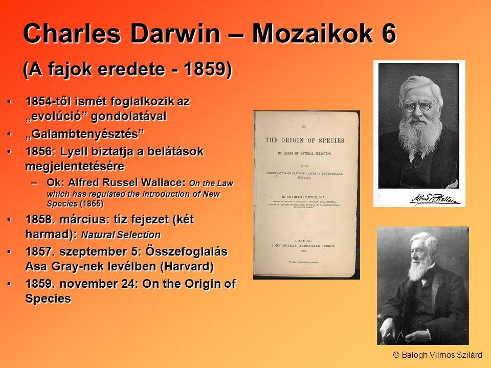 Charles Darwin – Mozaikok 6 (A fajok eredete - 1859) 1854-től ismét foglalkozik az evolúció gondolatával1854-től ismét foglalkozik az evolúció gondola