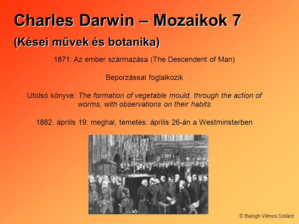 Charles Darwin – Mozaikok 7 (Kései művek és botanika) 1871: Az ember származása (The Descendent of Man) Beporzással foglalkozik Utolsó könyve: The formation of vegetable mould, through the action of worms, with observations on their habits 1882.