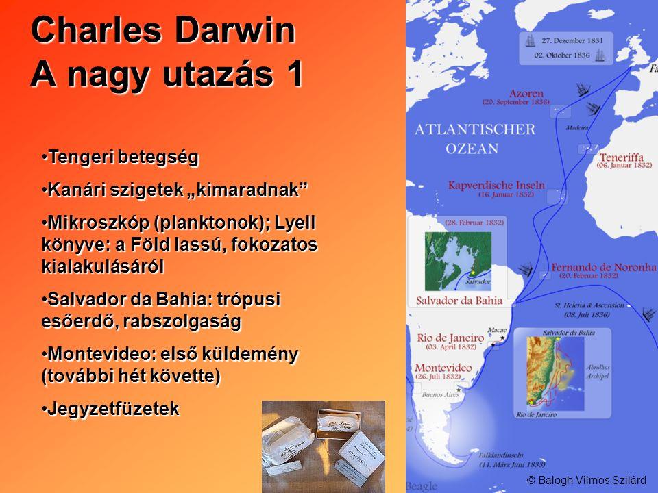 Charles Darwin A nagy utazás 1 Tengeri betegségTengeri betegség Kanári szigetek kimaradnakKanári szigetek kimaradnak Mikroszkóp (planktonok); Lyell kö