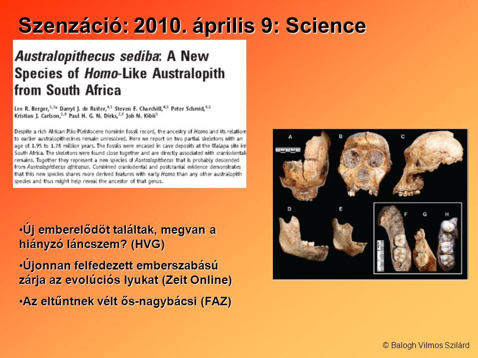 Szenzáció: 2010. április 9: Science Új emberelődöt találtak, megvan a hiányzó láncszem? (HVG)Új emberelődöt találtak, megvan a hiányzó láncszem? (HVG)