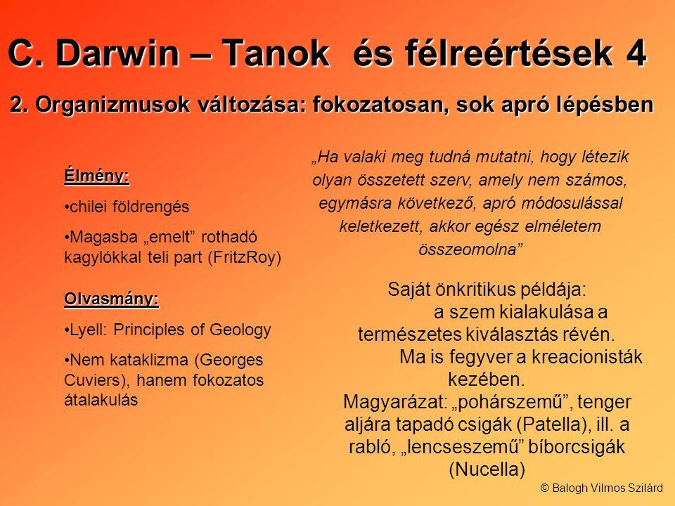 C. Darwin – Tanok és félreértések 4 2.Organizmusok változása: fokozatosan, sok apró lépésben Élmény: chilei földrengés Magasba emelt rothadó kagylókka