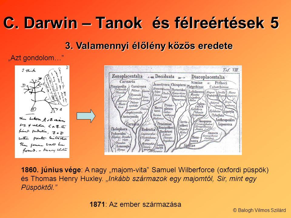 C. Darwin – Tanok és félreértések 5 3.Valamennyi élőlény közös eredete Azt gondolom… 1860. június vége: A nagy majom-vita Samuel Wilberforce (oxfordi