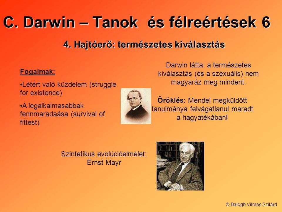 C. Darwin – Tanok és félreértések 6 4.Hajtóerő: természetes kiválasztás Fogalmak: Létért való küzdelem (struggle for existence) A legalkalmasabbak fen