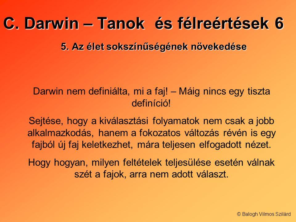C. Darwin – Tanok és félreértések 6 5.Az élet sokszínűségének növekedése Darwin nem definiálta, mi a faj! – Máig nincs egy tiszta definíció! Sejtése,