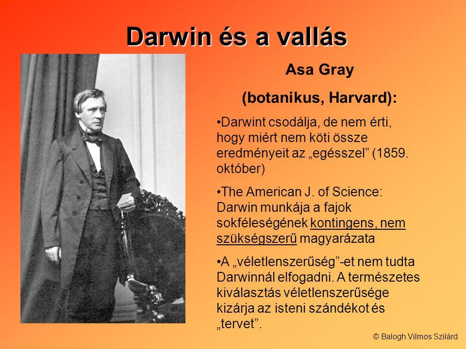 Darwin és a vallás Darwin és a vallás Asa Gray (botanikus, Harvard): Darwint csodálja, de nem érti, hogy miért nem köti össze eredményeit az egésszel