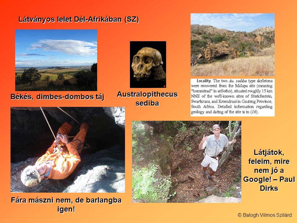 Látványos lelet Dél-Afrikában (SZ) Australopithecus sediba Békés, dimbes-dombos táj Fára mászni nem, de barlangba igen! Látjátok, feleim, mire nem jó