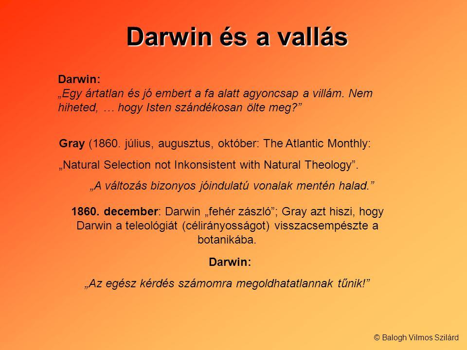 Darwin és a vallás Darwin és a vallás Darwin: Egy ártatlan és jó embert a fa alatt agyoncsap a villám. Nem hiheted, … hogy Isten szándékosan ölte meg?