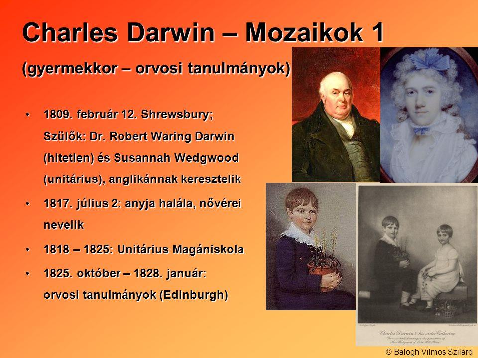 Charles Darwin – Mozaikok 1 (gyermekkor – orvosi tanulmányok) 1809. február 12. Shrewsbury; Szülők: Dr. Robert Waring Darwin (hitetlen) és Susannah We