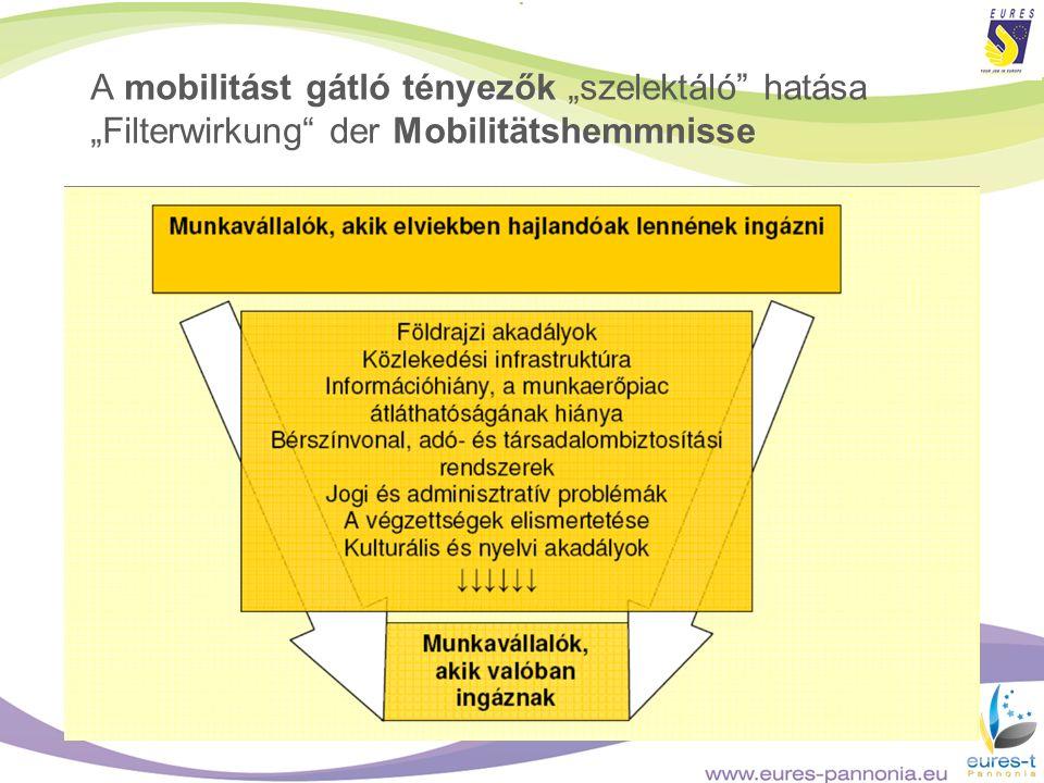 A mobilitást gátló tényezők szelektáló hatása Filterwirkung der Mobilitätshemmnisse