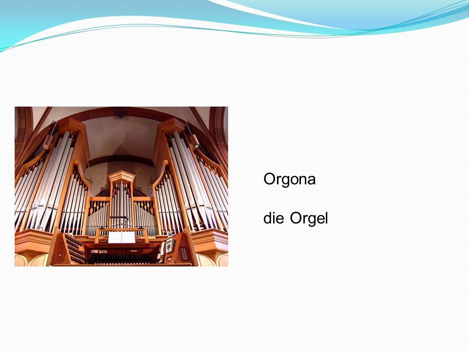 Orgona die Orgel