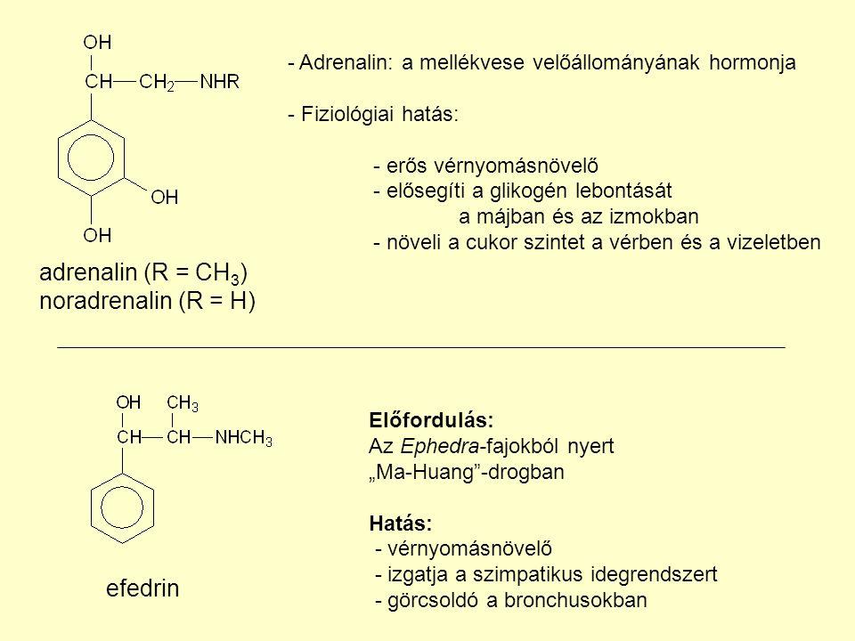 - Adrenalin: a mellékvese velőállományának hormonja - Fiziológiai hatás: - erős vérnyomásnövelő - elősegíti a glikogén lebontását a májban és az izmokban - növeli a cukor szintet a vérben és a vizeletben adrenalin (R = CH 3 ) noradrenalin (R = H) efedrin Előfordulás: Az Ephedra-fajokból nyert Ma-Huang-drogban Hatás: - vérnyomásnövelő - izgatja a szimpatikus idegrendszert - görcsoldó a bronchusokban