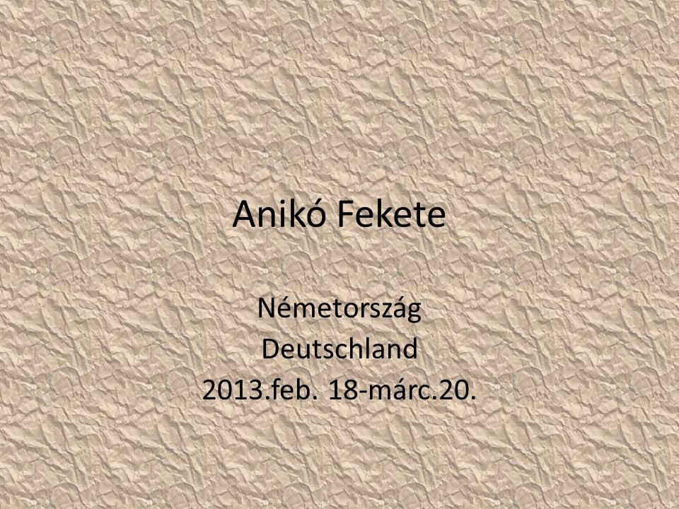 Anikó Fekete Németország Deutschland 2013.feb. 18-márc.20.