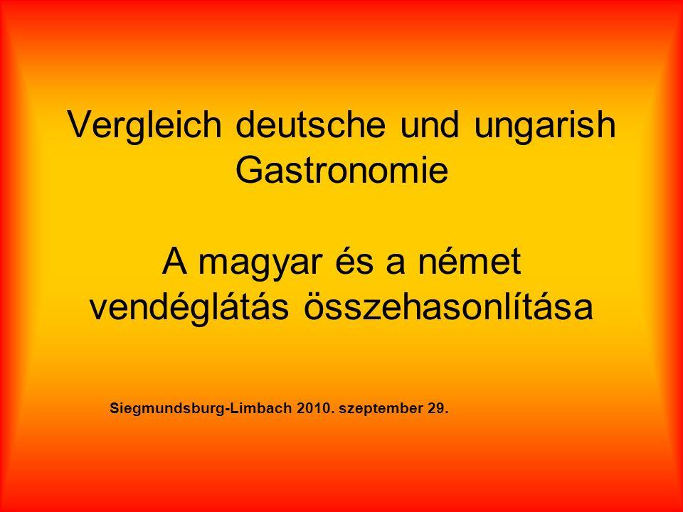 Vergleich deutsche und ungarish Gastronomie A magyar és a német vendéglátás összehasonlítása Siegmundsburg-Limbach 2010.
