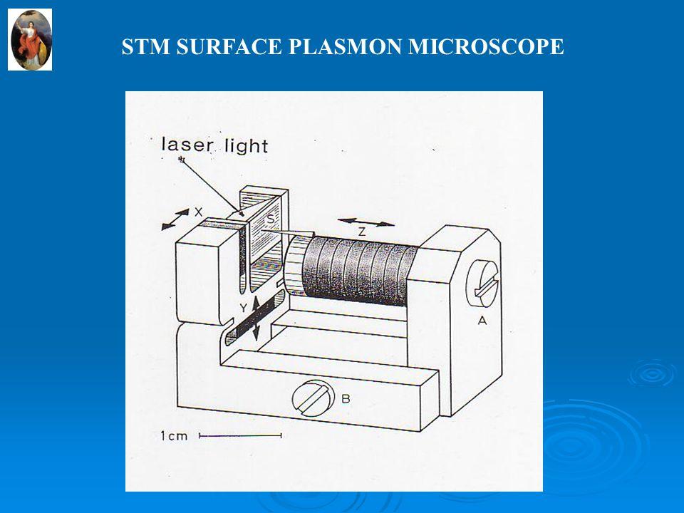 STM SURFACE PLASMON MICROSCOPE