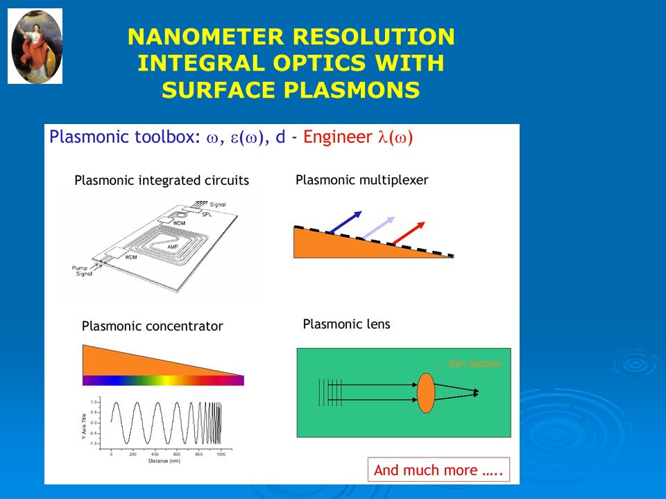 NANOMETER RESOLUTION INTEGRAL OPTICS WITH SURFACE PLASMONS