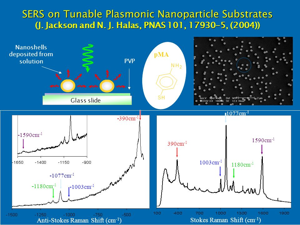 SERS on Tunable Plasmonic Nanoparticle Substrates (J.