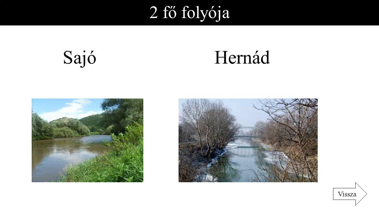 2 fő folyója HernádSajó Vissza