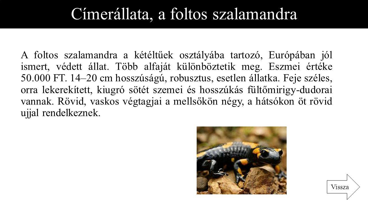 Címerállata, a foltos szalamandra A foltos szalamandra a kétéltűek osztályába tartozó, Európában jól ismert, védett állat. Több alfaját különböztetik