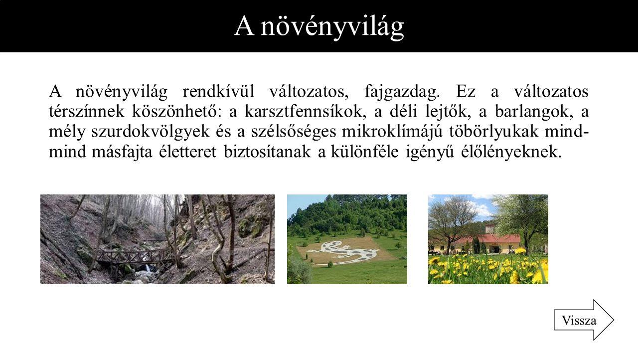 A növényvilág A növényvilág rendkívül változatos, fajgazdag. Ez a változatos térszínnek köszönhető: a karsztfennsíkok, a déli lejtők, a barlangok, a m