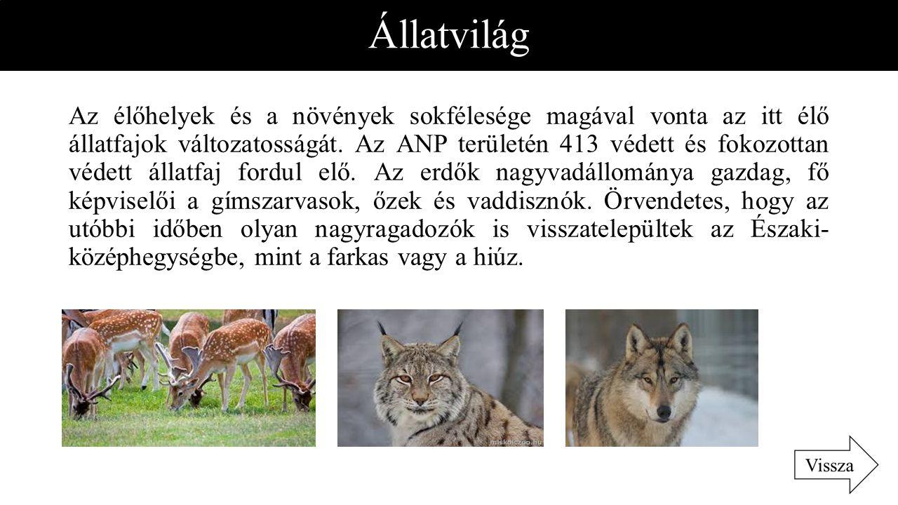 Állatvilág Az élőhelyek és a növények sokfélesége magával vonta az itt élő állatfajok változatosságát. Az ANP területén 413 védett és fokozottan védet