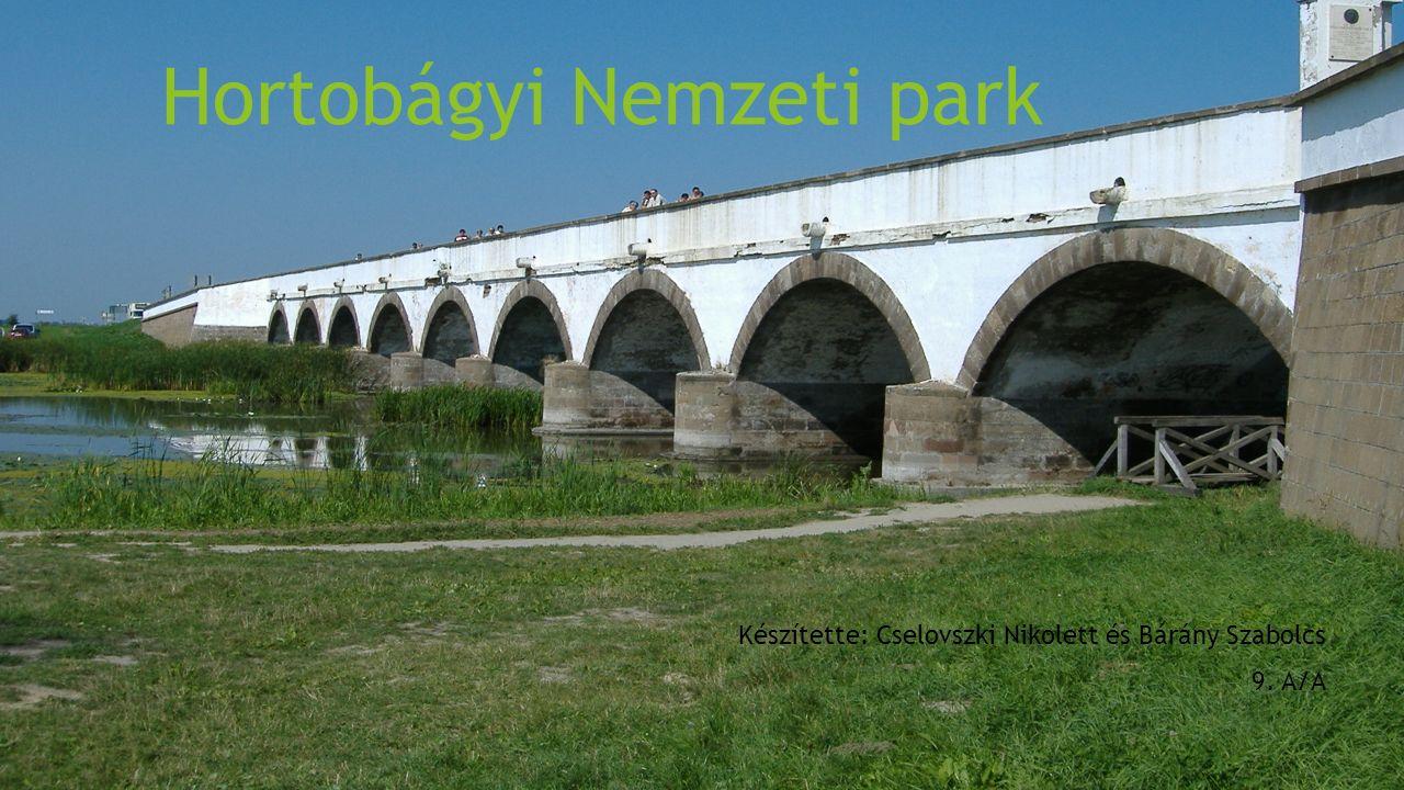 Hortobágyi Nemzeti park Készítette: Cselovszki Nikolett és Bárány Szabolcs 9. A/A