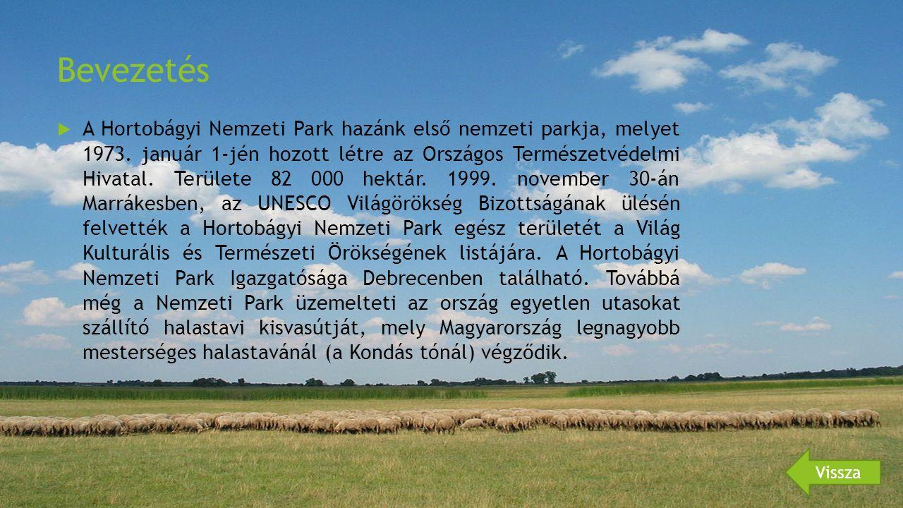 Bevezetés  A Hortobágyi Nemzeti Park hazánk első nemzeti parkja, melyet 1973.