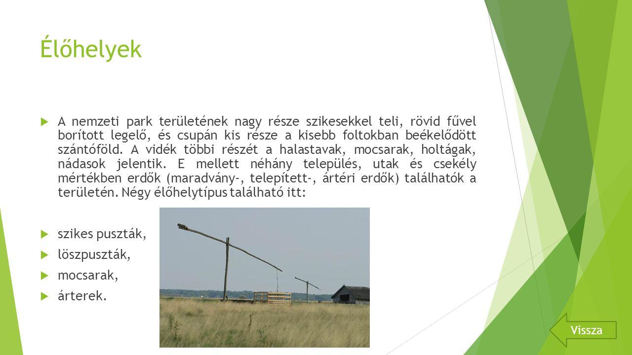 Élőhelyek  A nemzeti park területének nagy része szikesekkel teli, rövid fűvel borított legelő, és csupán kis része a kisebb foltokban beékelődött szántóföld.