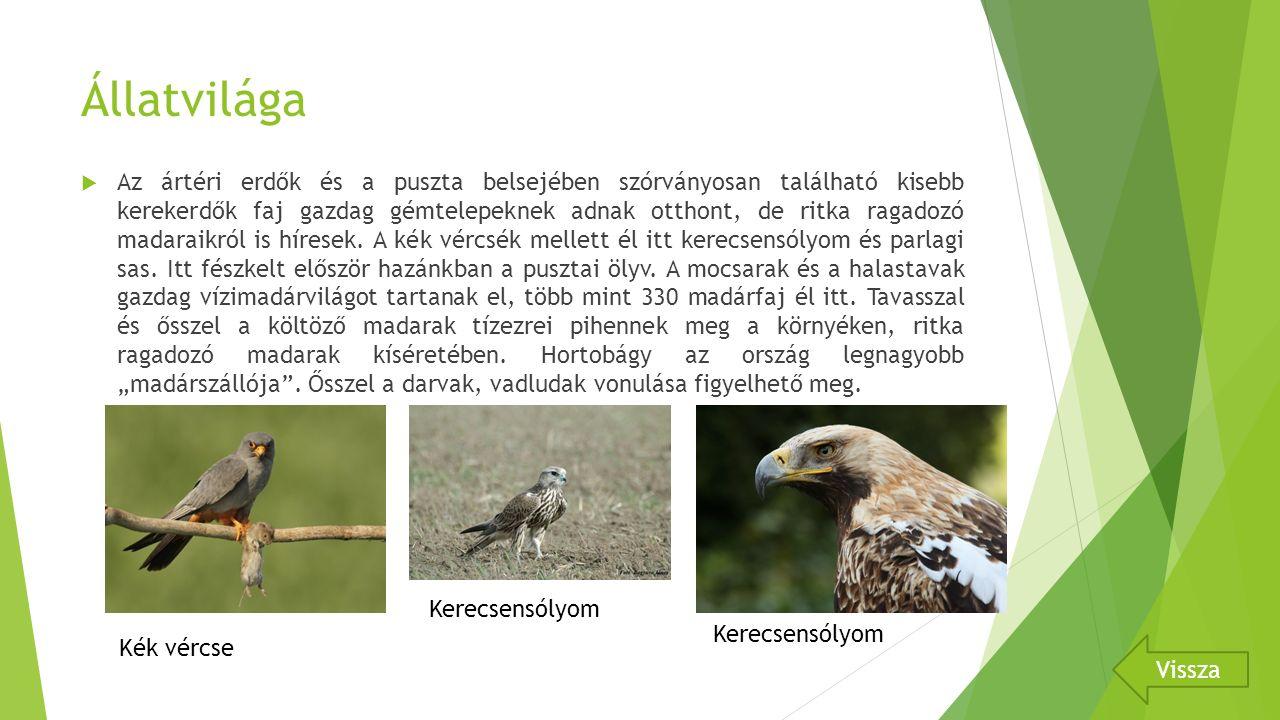 Állatvilága  Az ártéri erdők és a puszta belsejében szórványosan található kisebb kerekerdők faj gazdag gémtelepeknek adnak otthont, de ritka ragadozó madaraikról is híresek.